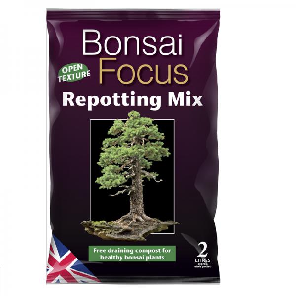 Bonsai Focus Pot Mix 2l