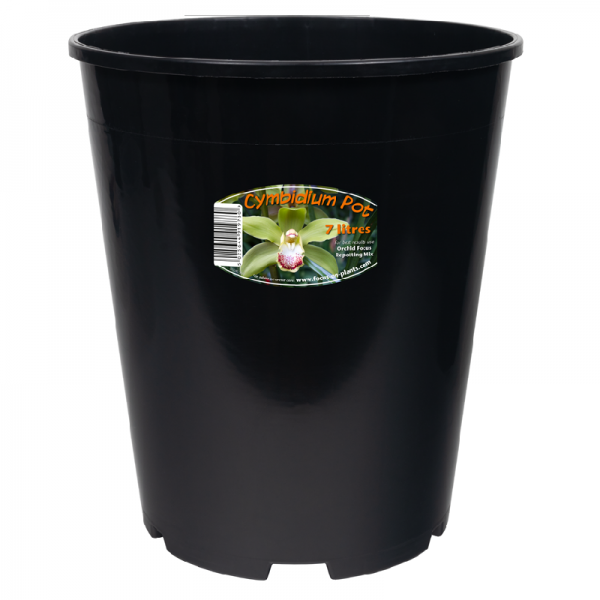 Cymbidium Pot 7ltr