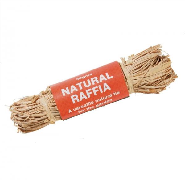 Natural Raffia 50g
