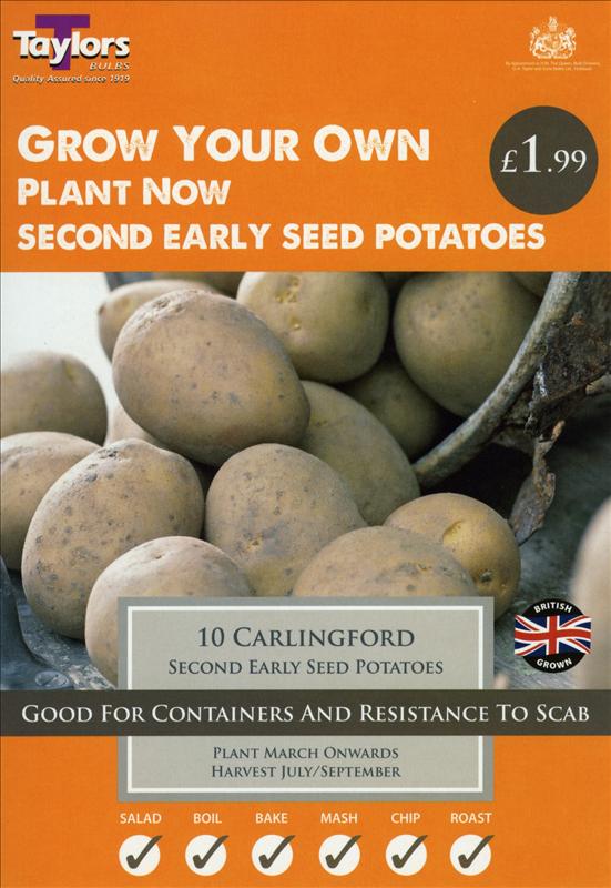 Carlingford  10 Pack