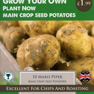 Maris Piper  10 Pack