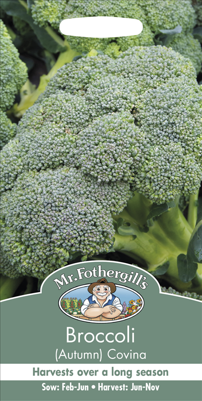 Broccoli (Autumn) Covin