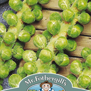 Brussels Sprout Napoleo