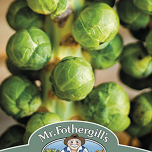 Brussels Sprout Windsor