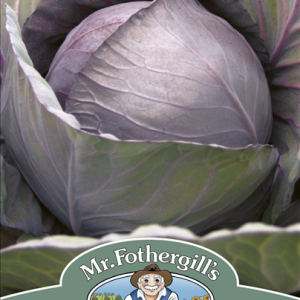 Cabbage Romanov F1