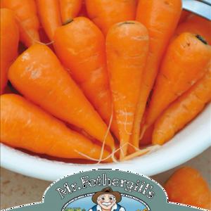 Carrot (Baby Chantenay)