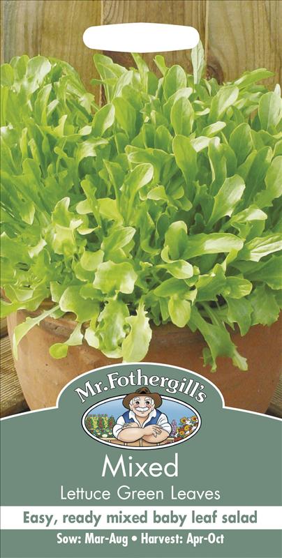 Mixed Lettuce Green Leaf