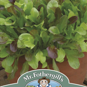 Mixed Lettuce Leaves