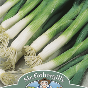 Onion (Spring) Evergreen