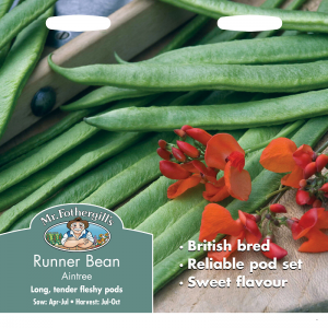 Runner Bean Aintree