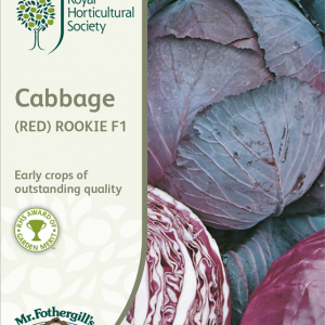 RHS Cabbage (Red) Rookie