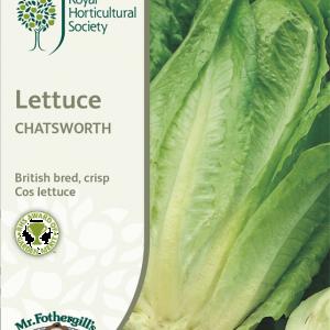 RHS Lettuce Chatsworth