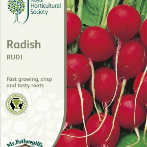 RHS Radish Rudi