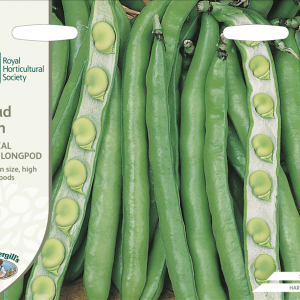 RHS Broad Bean Imperial