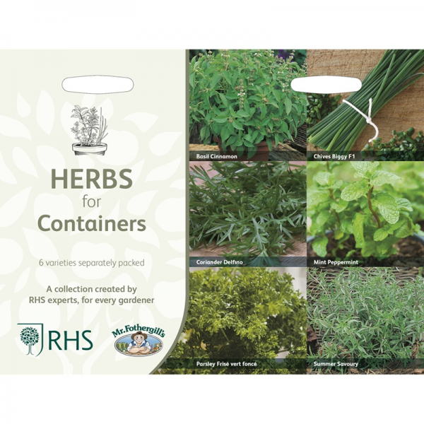 RHS Herbs For Containers