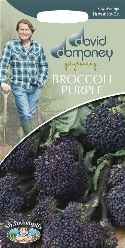 David Domoney Broccoli Purple