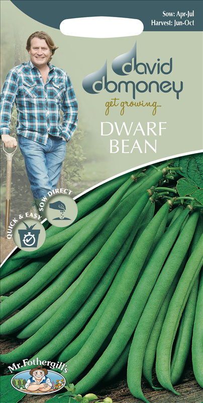 David Domoney Dwarf Bean