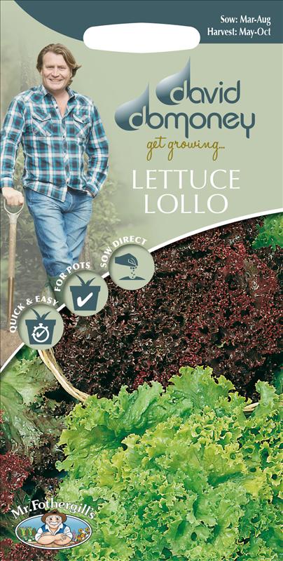 David Domoney Lettuce Lollo