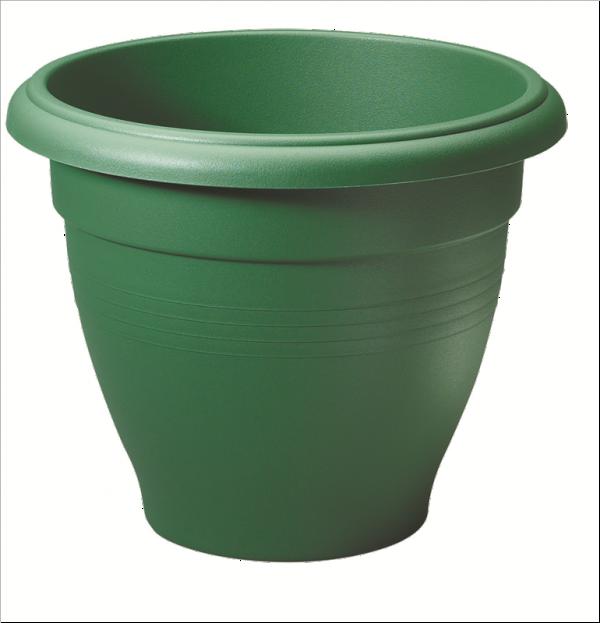 30cm Green
