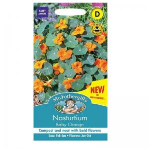 Nasturtium Baby Orange