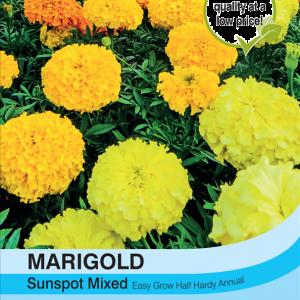 Marigold Sunspot Mixed