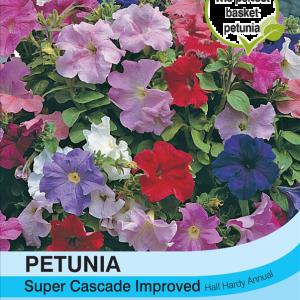 Petunia Super Cascade