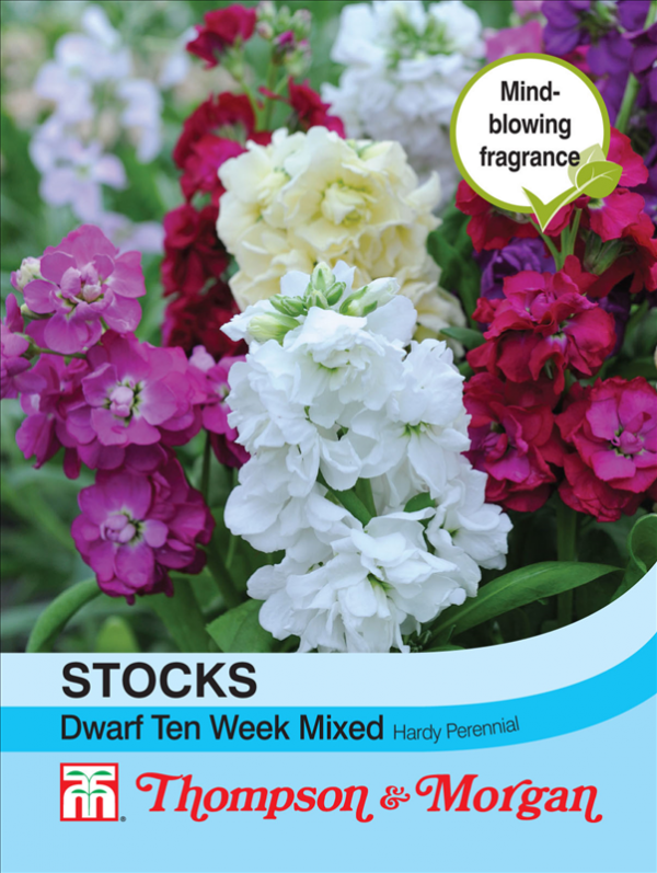Stocks Dwarf Ten Week Mixed