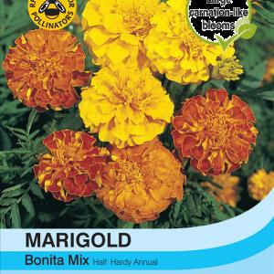 Marigold Bonita Mixed (French)