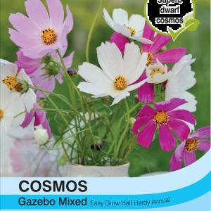Cosmos Gazebo Mixture