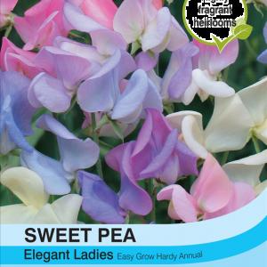 Sweet Pea Elegant Ladies