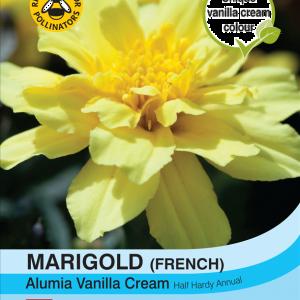 Marigold Alumia Vanilla Cream