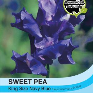 Sweet Pea King Size Navy Blue