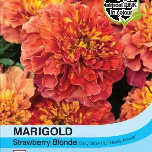 Marigold Strawberry Blonde