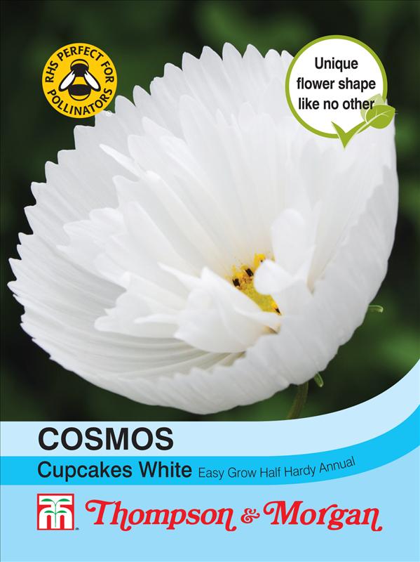 Cosmos Cupcakes - White