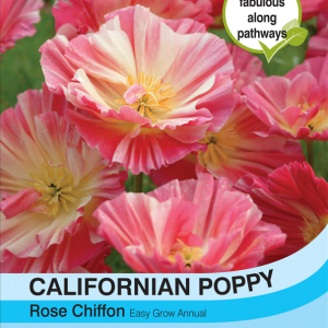 Californian Poppy Rose Chiffon