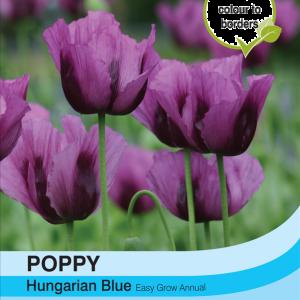 Poppy Hungarian Blue