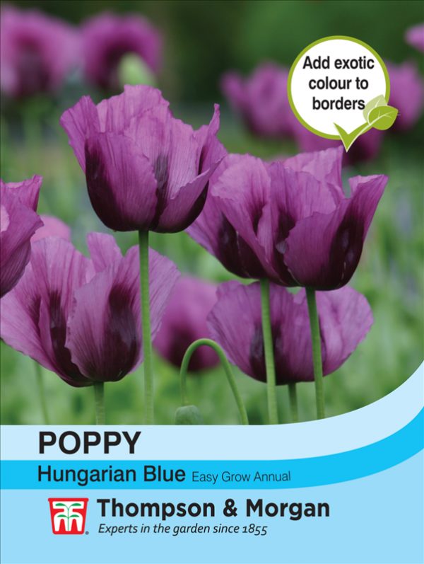 Poppy Hungarian Blue