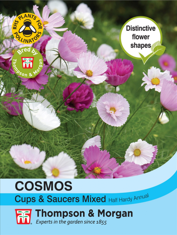 Cosmos Cups & Saucers Mixed