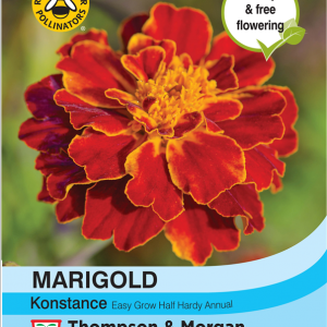 Marigold Konstance (French)