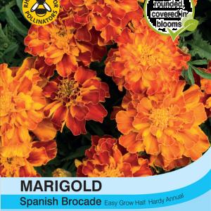 Marigold Spanish Brocade (French)