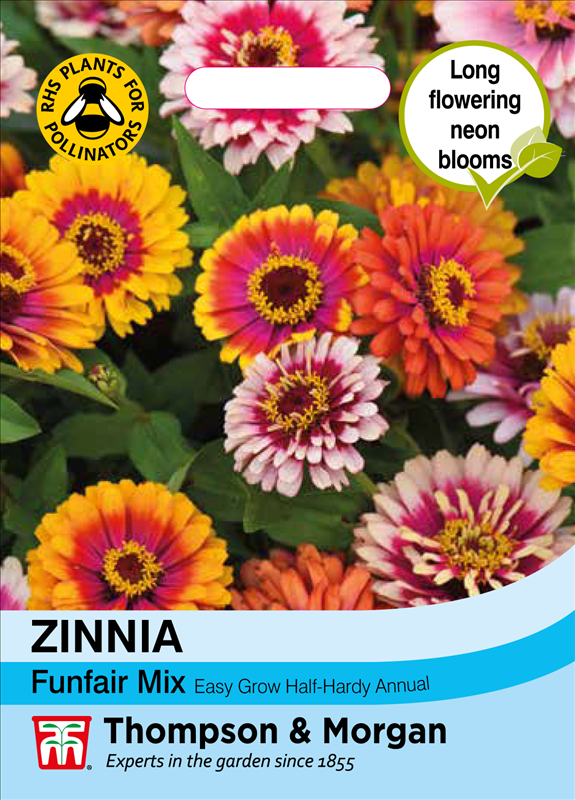 Zinnia Funfair Mix