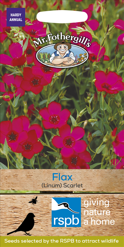 Flax (Linum) Scarlet