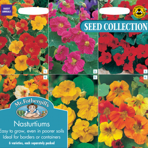 Nasturtium Collection