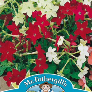 Nicotiana Roulette Mixed