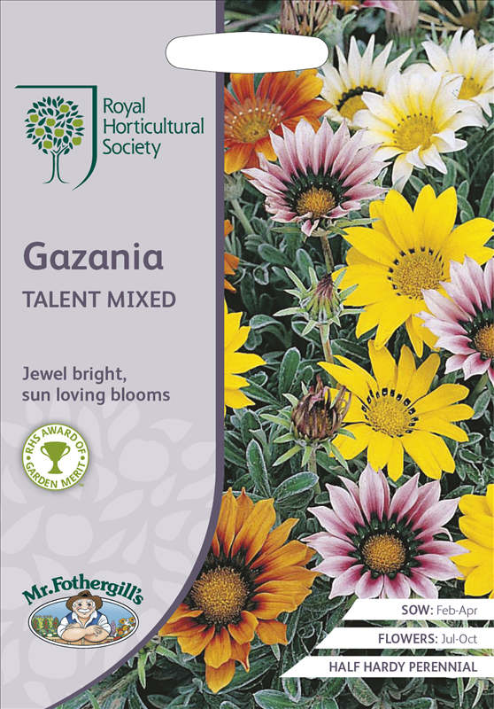 RHS Gazania Talent Mixed