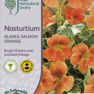 RHS Nasturtium Alaska Salmon Orange