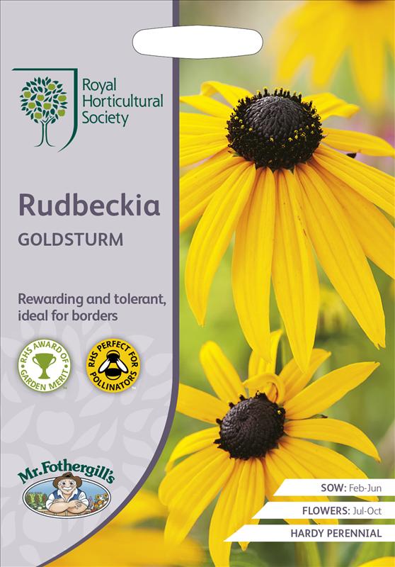 RHS Rudbeckia Goldsturm