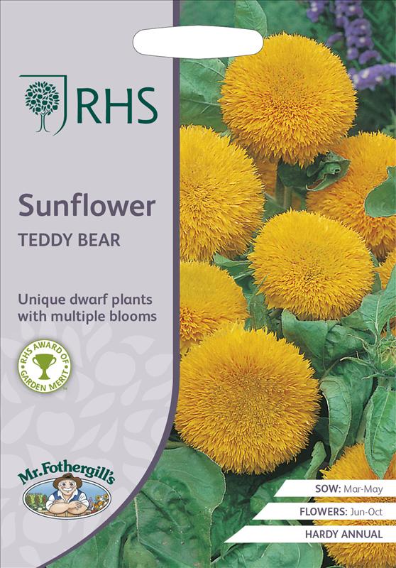 RHS Sunflower Teddy Bear