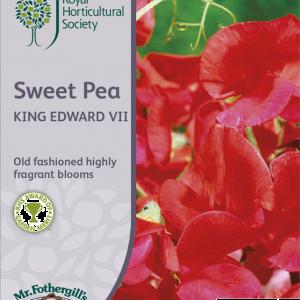 RHS Sweet Pea King Edwar