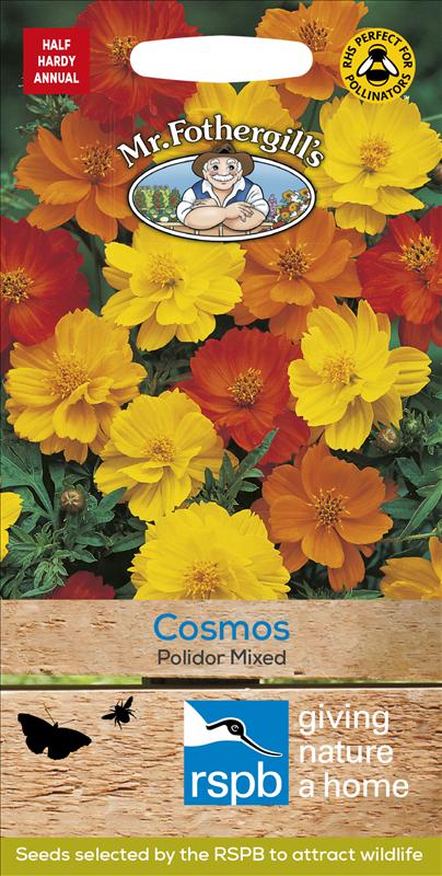 Cosmos Polidor Mixed